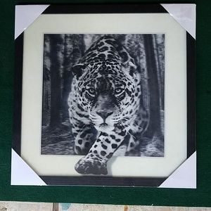 Other - 16 x 16 white/black tiger 3D picture frame